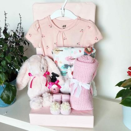 Baby Hamper Gift Set - J173