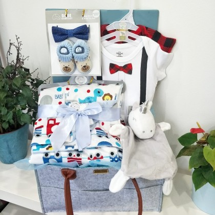 Baby Hamper Gift Set - J111