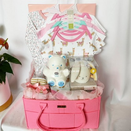 Baby Hamper Baby Gifts - J43