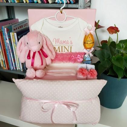 Baby Hamper Baby Gifts - J147